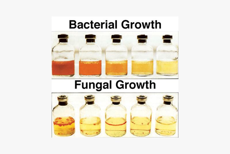 Liqui-Cult Microbial Test Kit